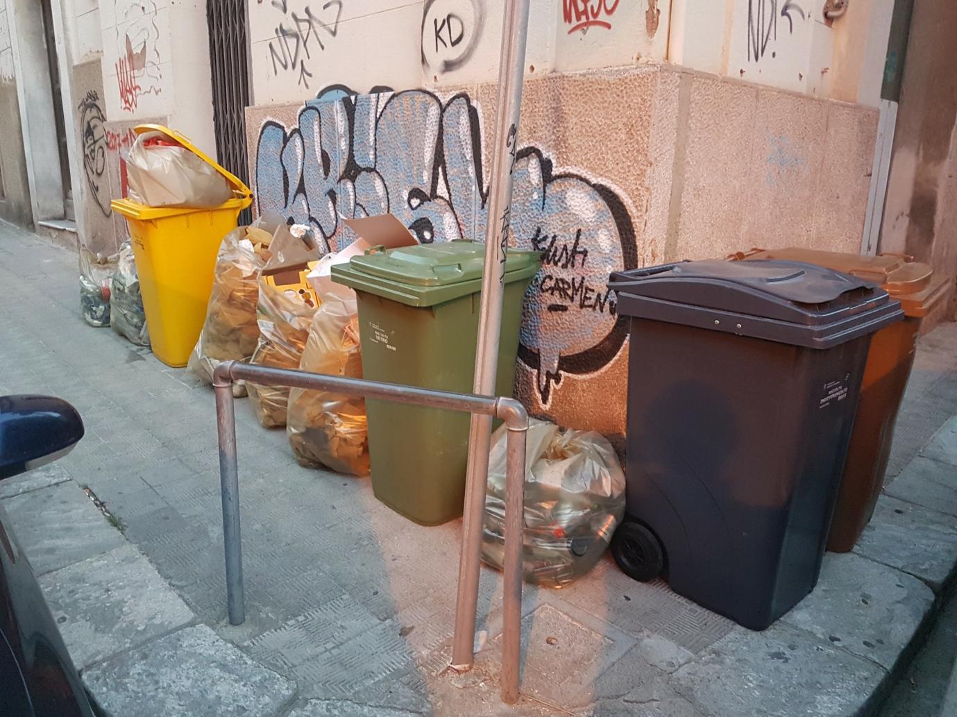 """""""Idea Progetto raccolta DifferenziAMOla 2.0"""" Proposta per migliorare la raccolta differenziata dei rifiuti nella Città di Reggio Calabria 13"""