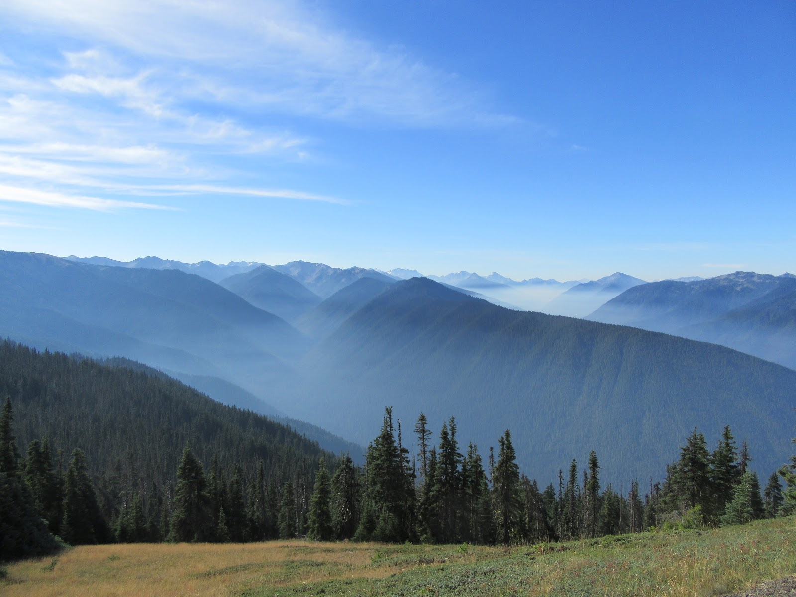 Hurricane Ridge summit with clouds laying in canyons between mountain ridges