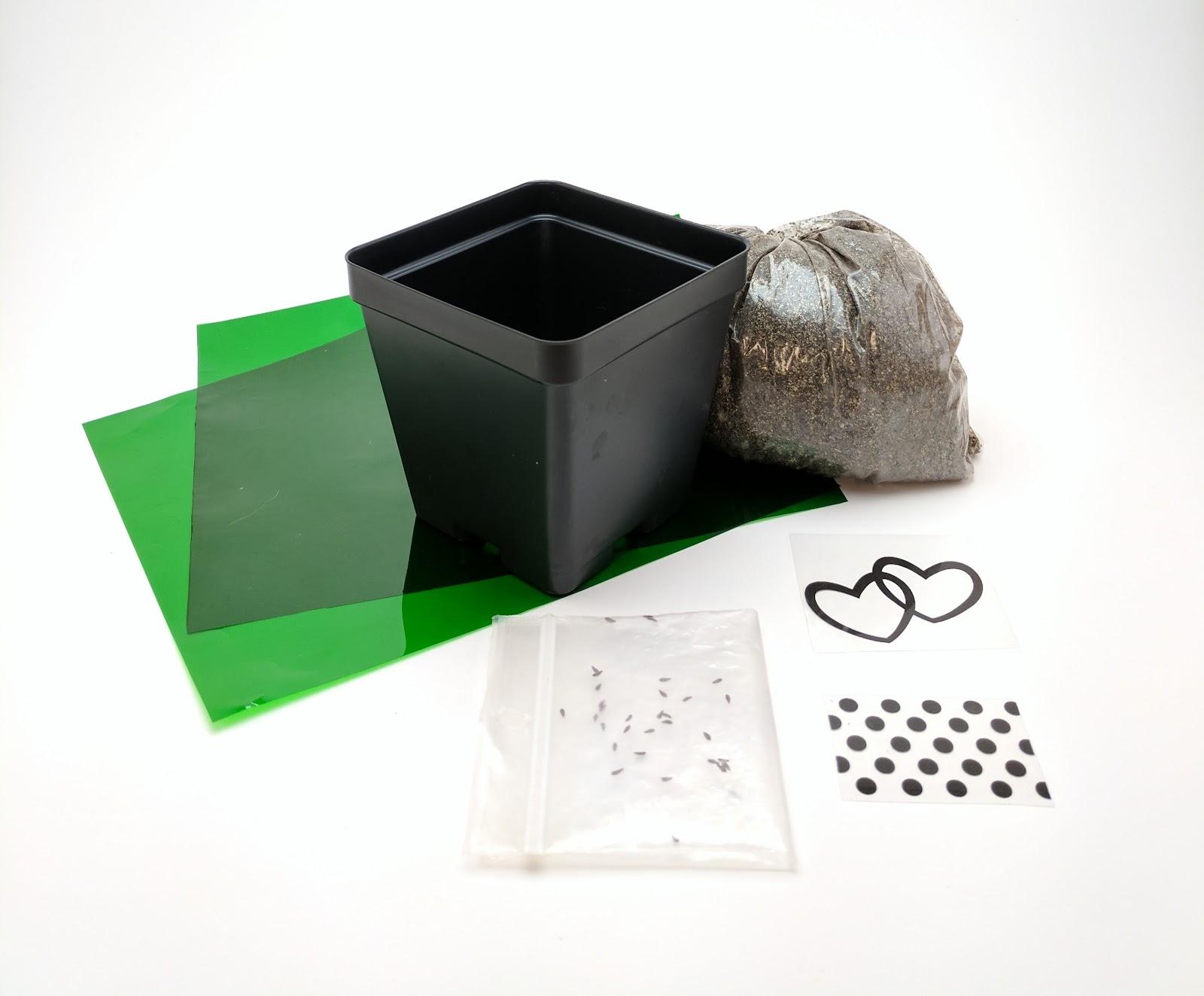 Veg-A-Sketch kit