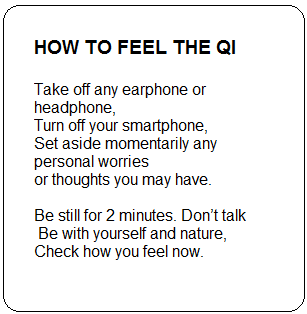 How to Feel the Qi