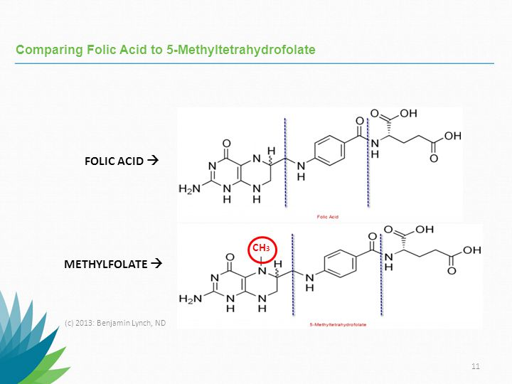 Comparing+Folic+Acid+to+5-Methyltetrahydrofolate.jpg