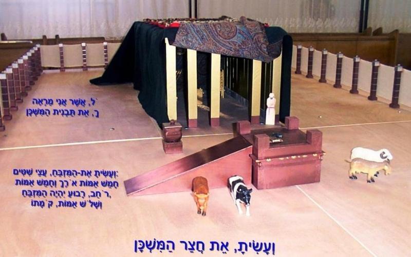 http://www.yeshiva.org.il/wiki/images/thumb/f/fc/Degem_osnis.jpg/800px-Degem_osnis.jpg