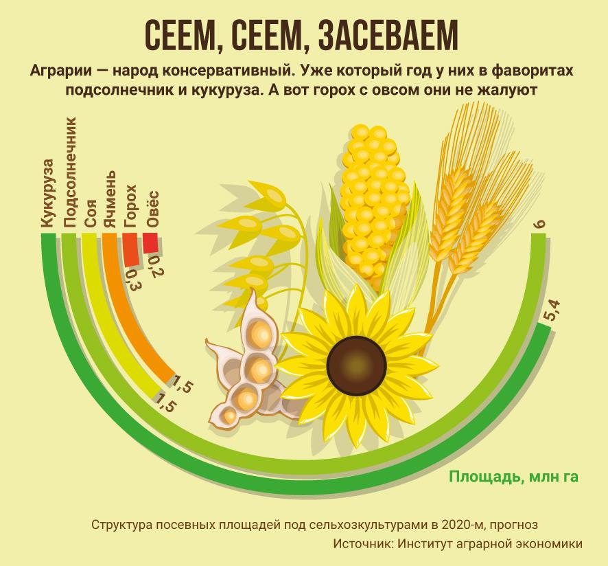 инфографика, структура посевных площадей, Украина