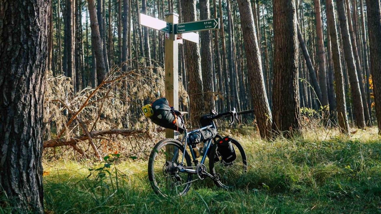Fahrrad an ein Schild gelehnt im Wald
