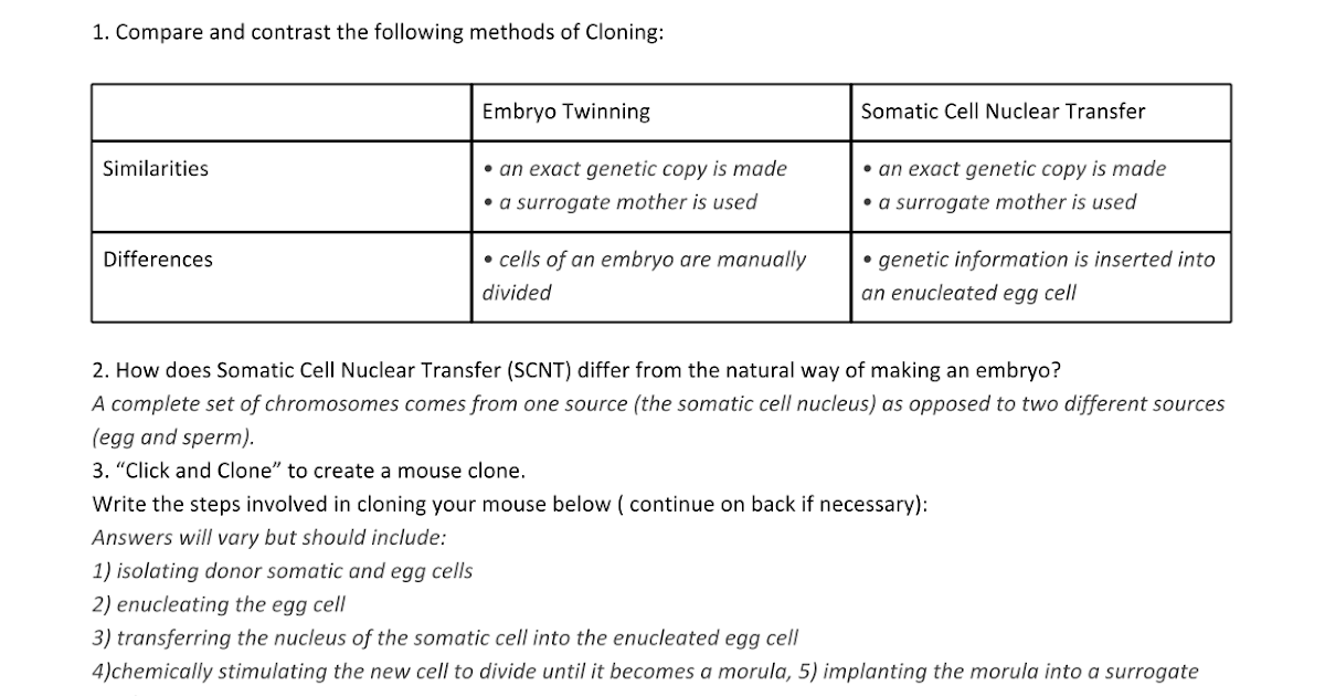 CLONING WS ANSWER KEY Google Docs – The Virtual Cell Worksheet Answers