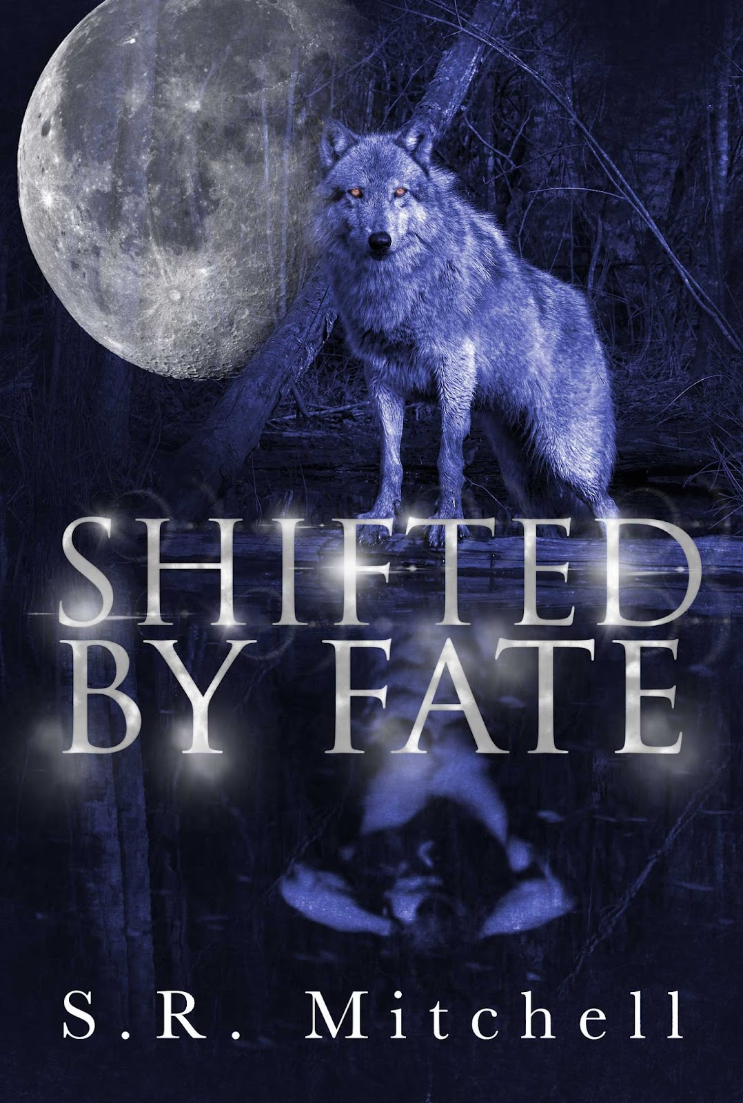 Shifted-by-Fate-ebook.jpg
