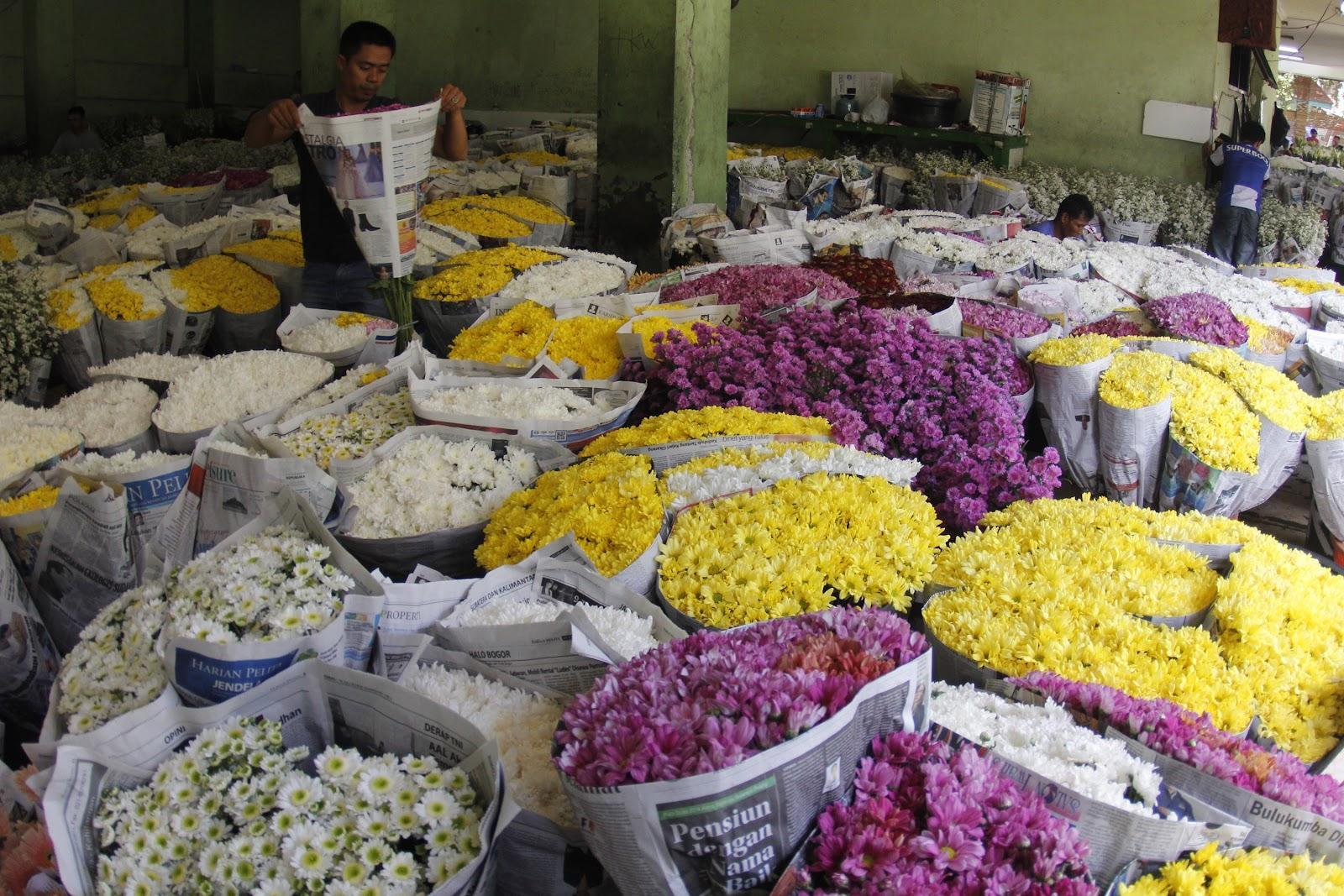 Sentra Bunga Rawa Belong