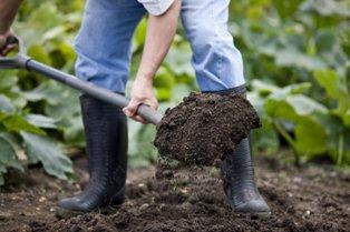 уход за почвой весной