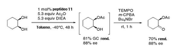 catal enant 1-2.JPG