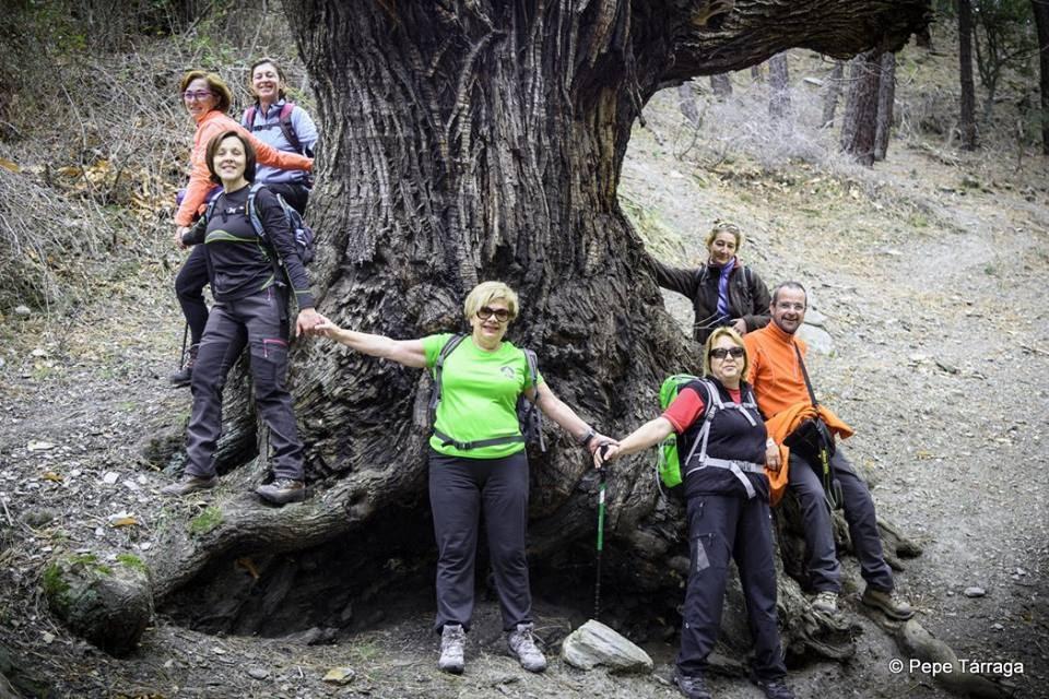 La imagen puede contener: 7 personas, personas sonriendo