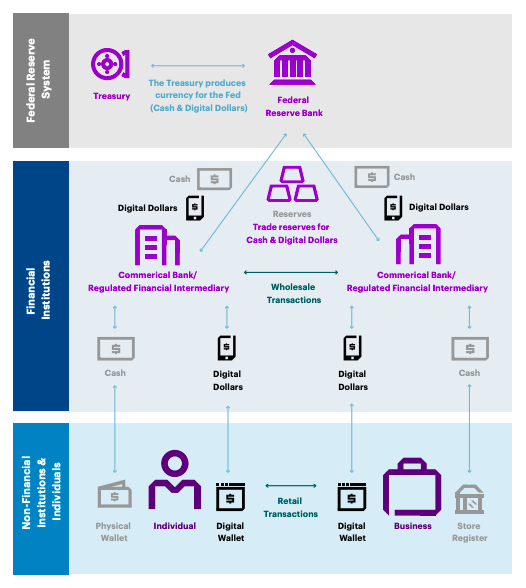 Illustration showing the two-tier distribution model of physical cash and tokenized digital dollars