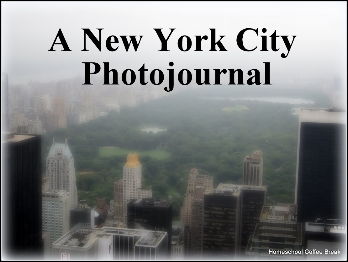 A New York City Photojournal (part of the July Blogging Challenge) on Homeschool Coffee Break @ kympossibleblog.blogspot.com