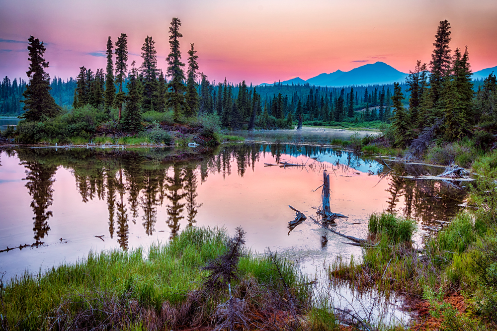 Alaska 2021 Travel Options