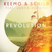 Revolution (Sunset Chill) (feat. Justin Hopkins)