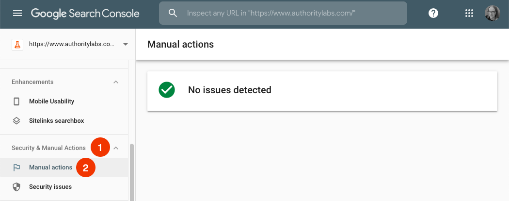 manual actions report in google search console