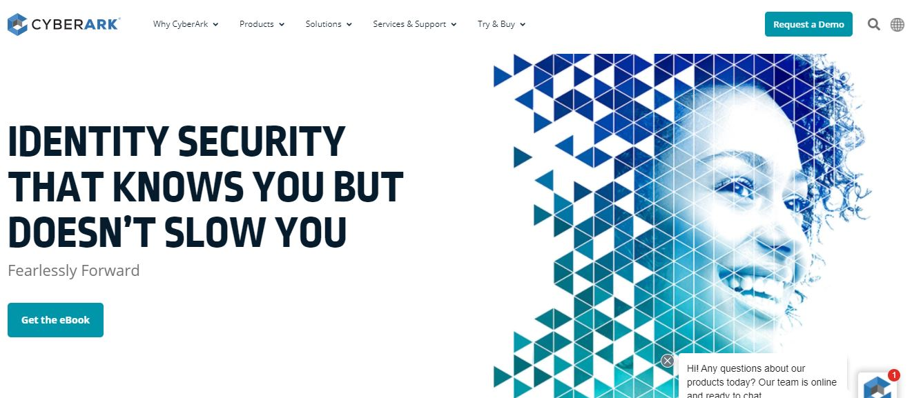 CyberArk Cybersecurity Company