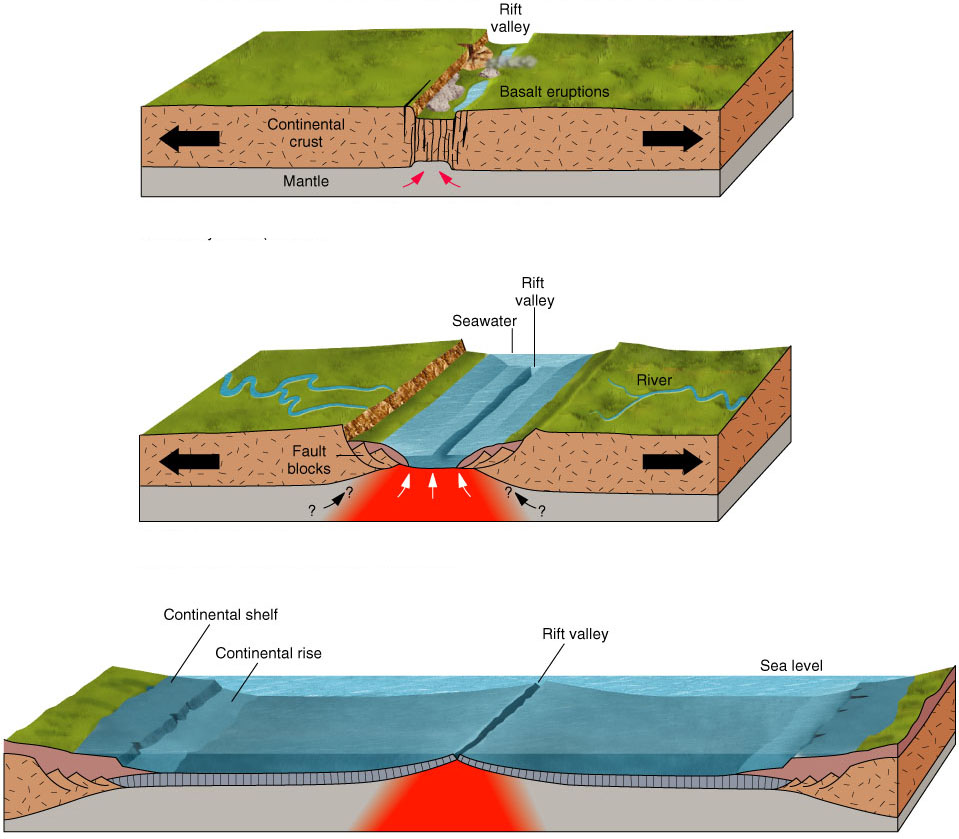 the extent to which tectonic processes The extent to which tectonic processes represent a hazard depends upon when and where they are experienced essay.