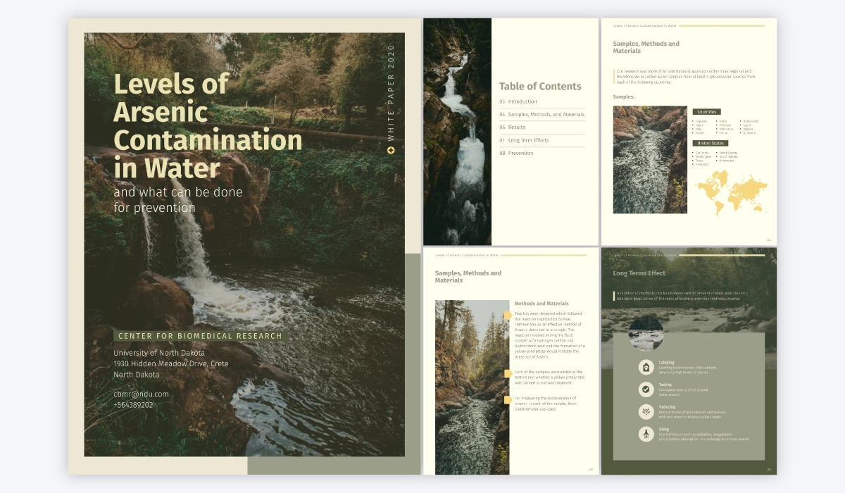 A design example of a white paper about 'Levels of Arsenic Contamination in Water'.
