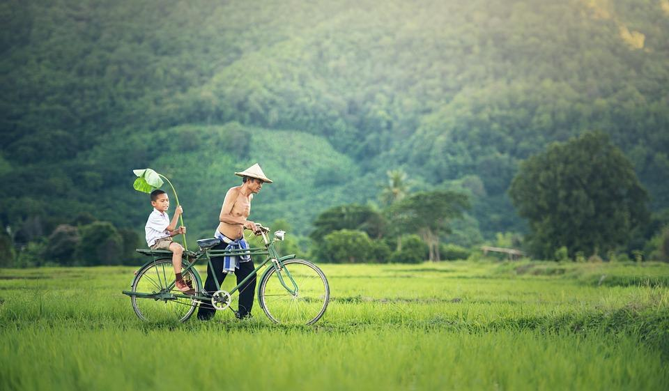 Bicycle, His Son, Seat, Cambodia, Relationship, Hands