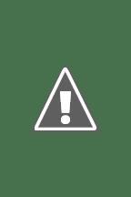 Watch The Stranger Online Free in HD