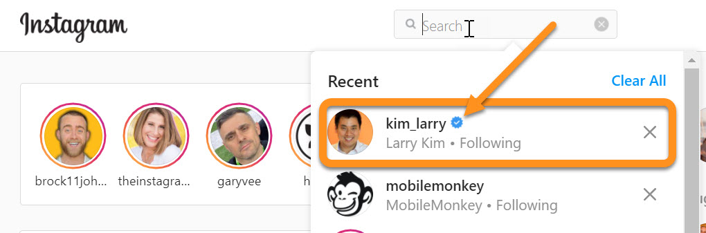 Instagram verification badge in search