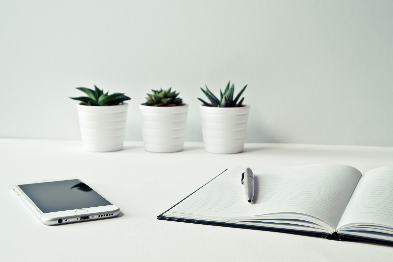 three-white-ceramic-pots-with-green-leaf-plants-near-open-notebook-with-click-pen-on-top- growing your business sustainably