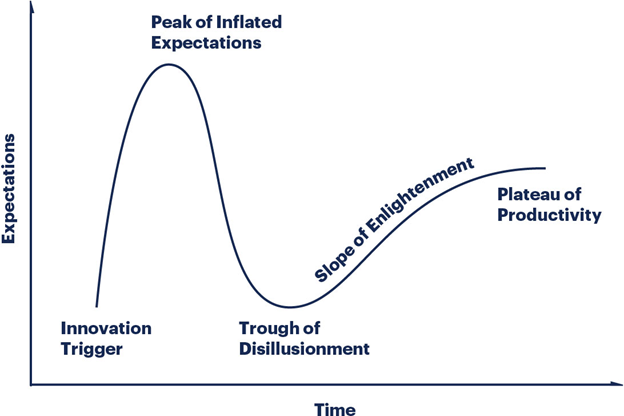 Graph representing the Gartner Hype Cycle (Source: Gartner)