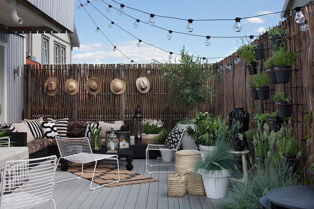Best Garden Trends for Best Outdoor 6