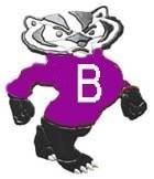 Badger2[1]