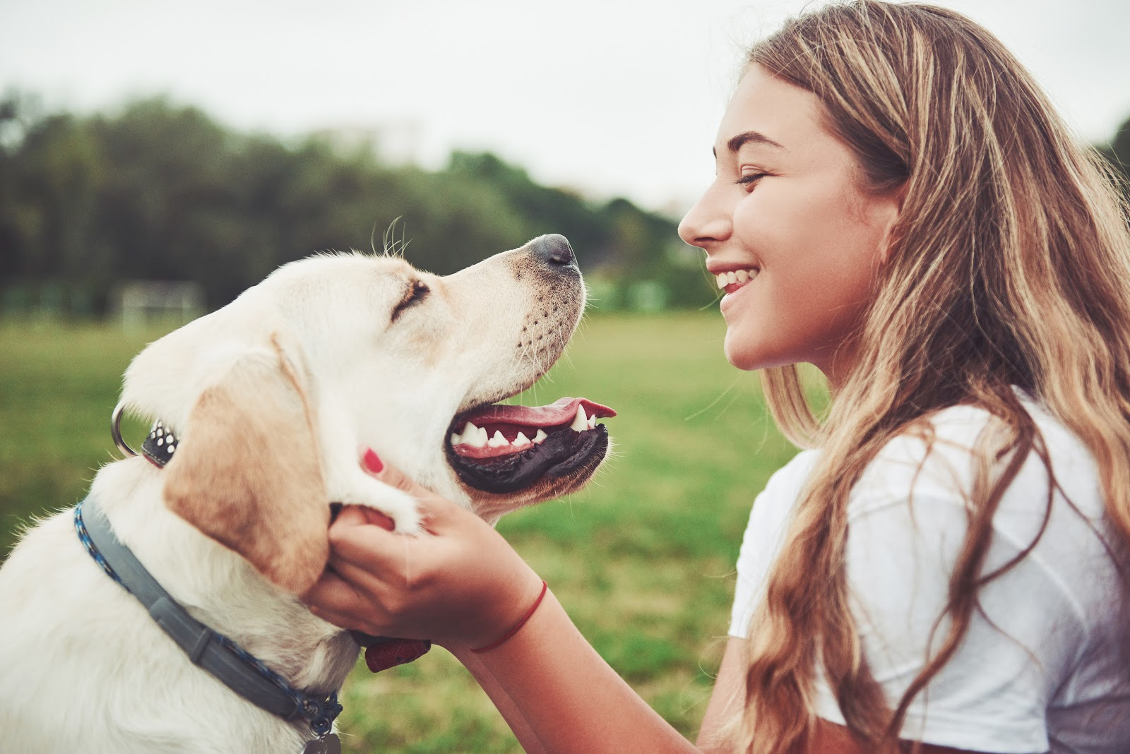 A girl holding the face of her dog, smiling and laughing