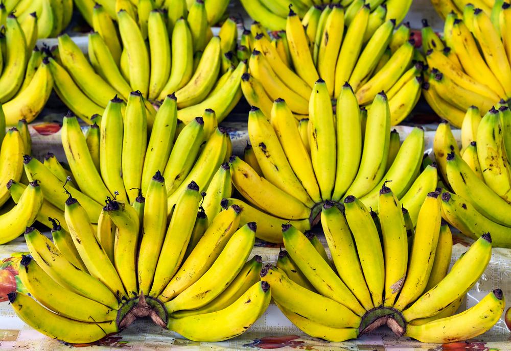 Exportação de banana brasileira alcançou uma alta de 14% em setembro de 2020 quando comparado ao mesmo mês de 2019 por conta do Mercosul. (Fonte: Shutterstock)
