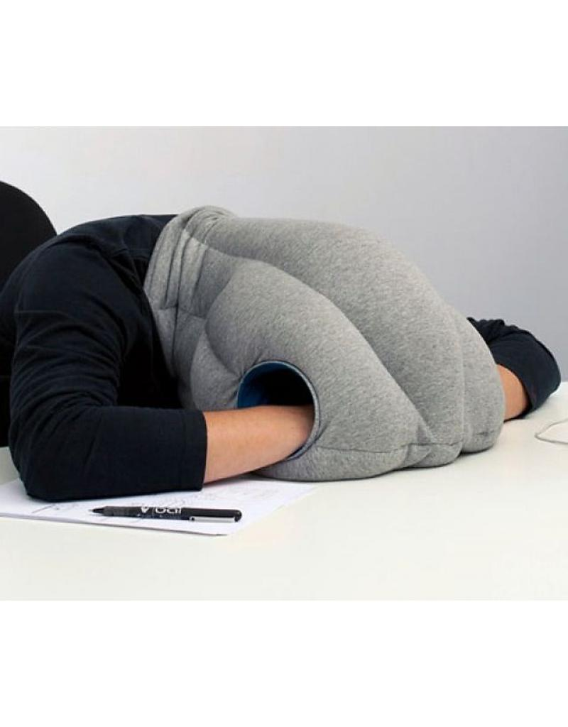 Image result for ostrich pillow