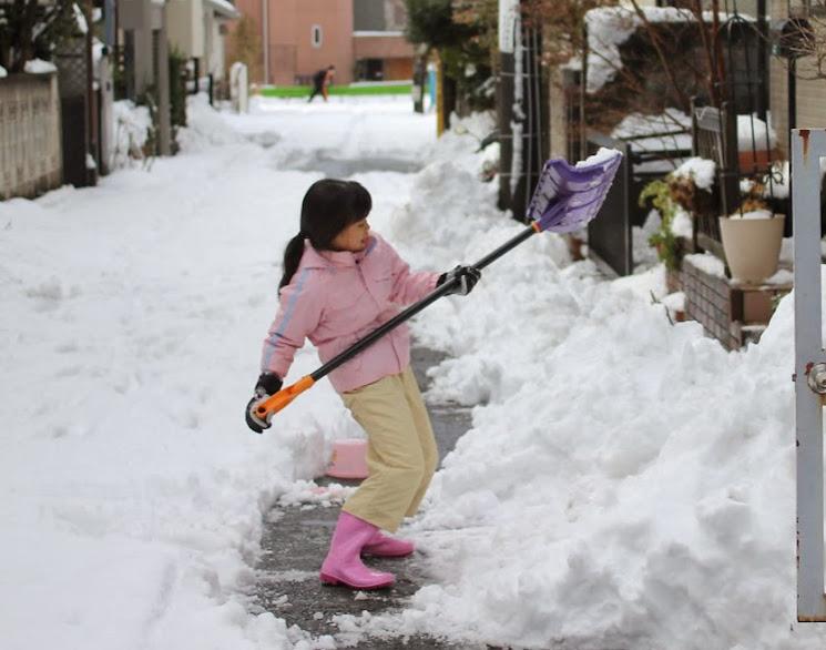 降りも降ったり、東京の大雪