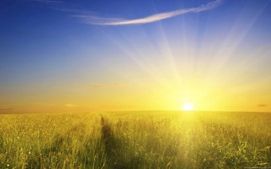 Rising-gold-sun.jpg