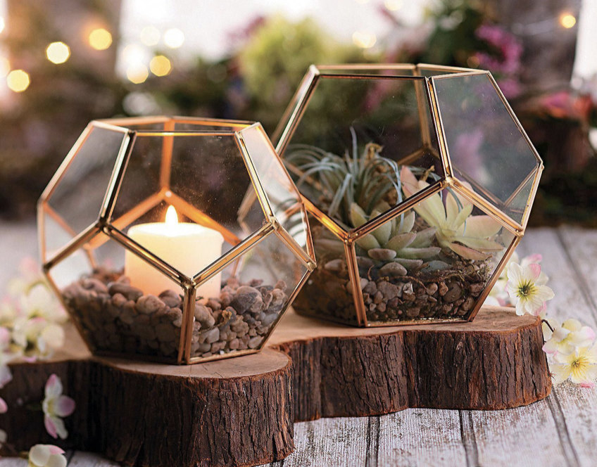 succulents and candles in geometric glass