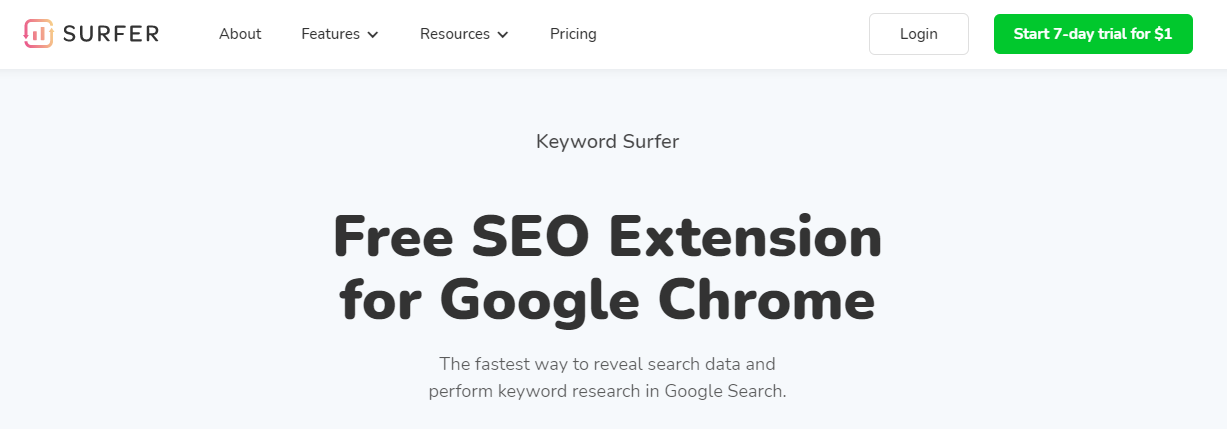 What is SEO, Surfer SEO
