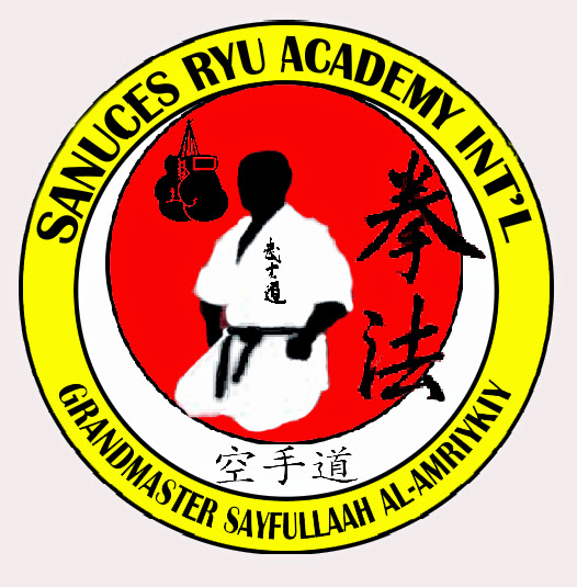 Sayfulah Sanuces Ryu In't patch design 1.jpg