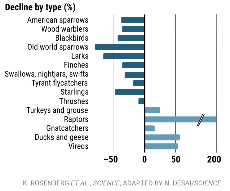 Screenshot of a bar chart from Science magazine showing decline by type of bird, relevant statistics duplicated in text.