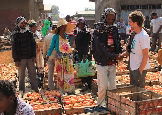 אמיר ונורי בשוק לאחר קטיף של נורי