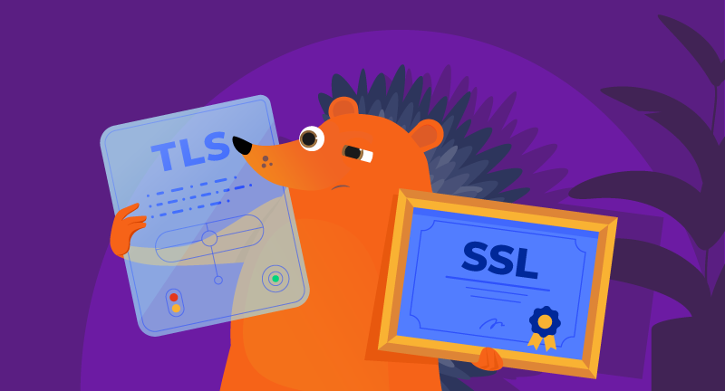 SSL vs TLS Certificates – What You Need to Know
