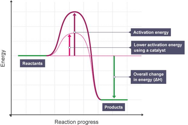 Igcse Chemistry 2017 314c Draw And Explain Reaction Profile