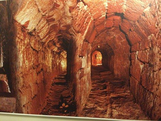 plumbing-service-tunnels.jpg