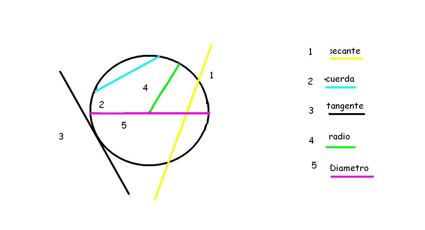 Líneas Curvas En El Plano Circunferencia Elementos De Una Circunferencia Los Topors