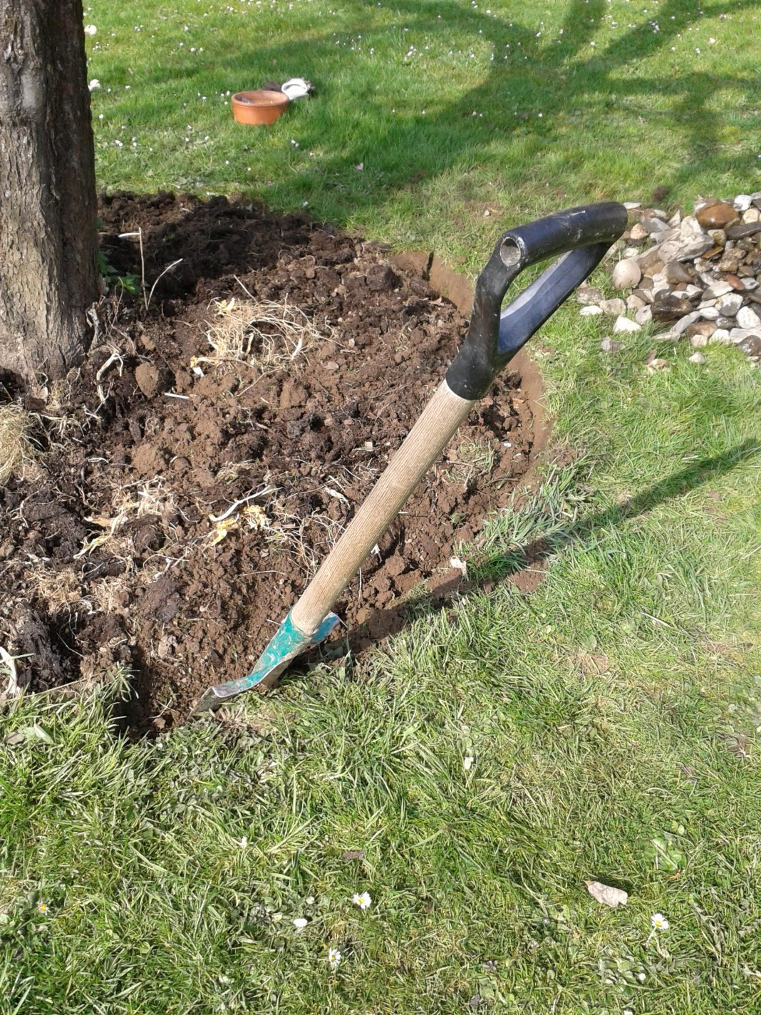 Укорачивание корней
