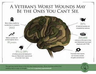 Image result for veterans mental illness