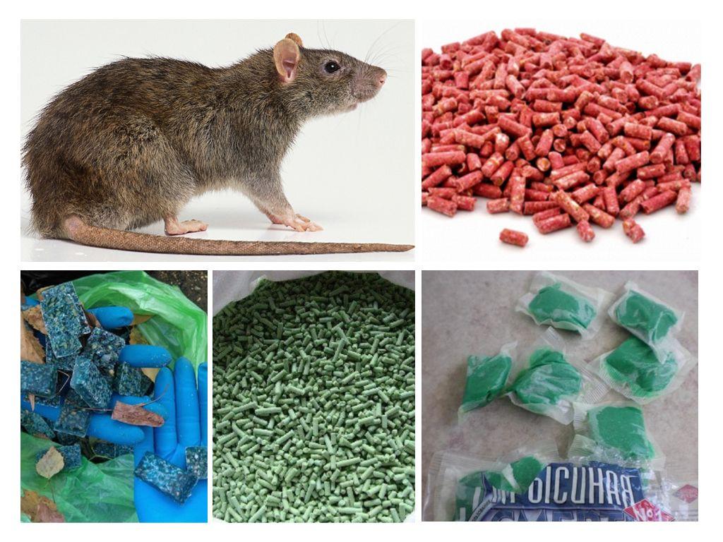 средства от крыс
