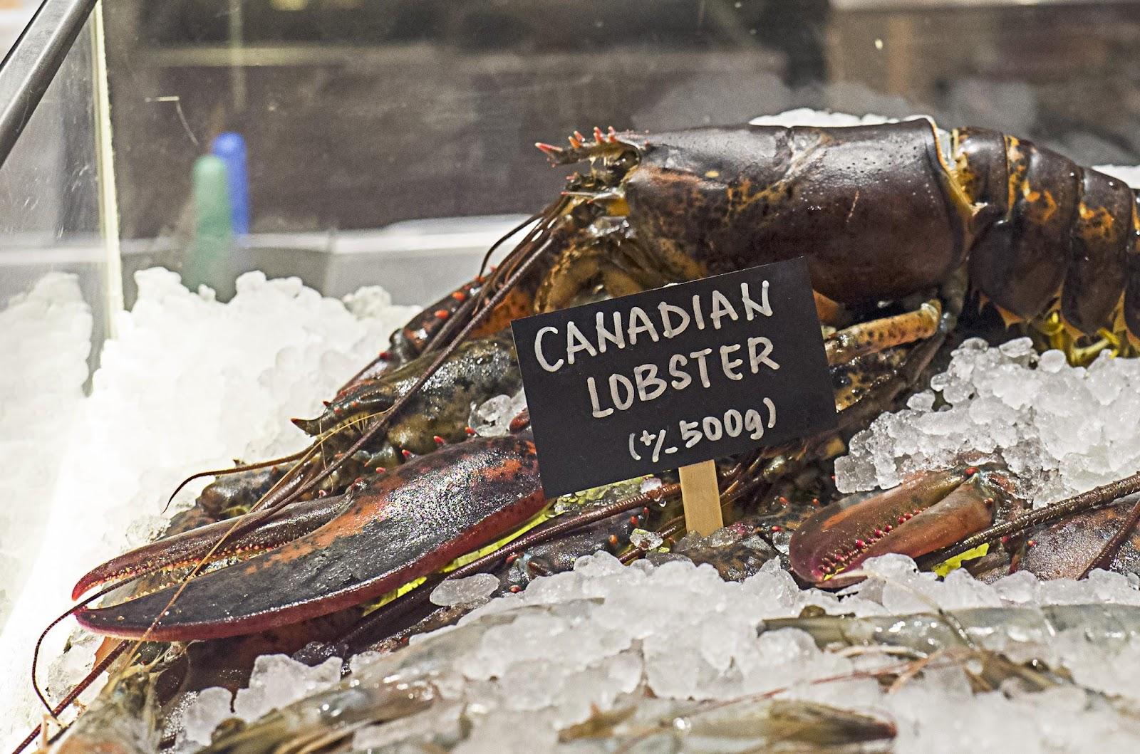 f-lobster-L1100424.jpg