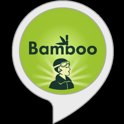 Bamboo Alexa Skill Icon