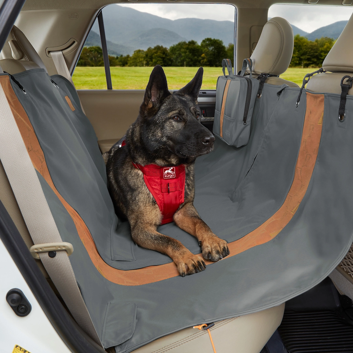 German Shepherd dog in back suit of car on Kurgo seat cover for article on how to keep your car clean