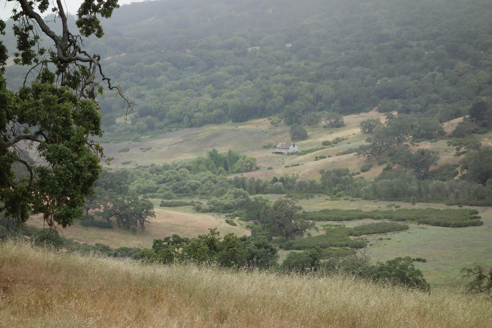 Open fields on bike climb to Lick Observatory Santa Clara County.